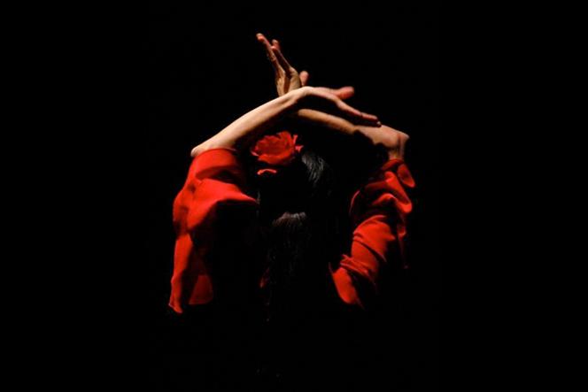 pasion-flamenco-valencia